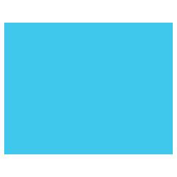 IndigoVision Camera Icon