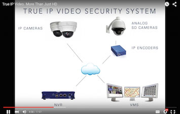 True-IP-Video-Icon