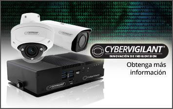 Cybervigilant - Obtenga más información